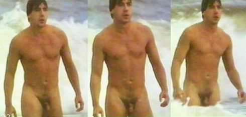 Apologise, Male nudity penis in movies think